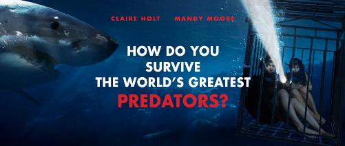 Sumérgete en las profundidades con '47 Meters Down' #SharkBait